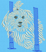 Maltese Agility #3 - Vodmochka Embroidery Design Picture - Click to Enlarge