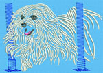 Maltese Agility #6 - Vodmochka Embroidery Design Picture - Click to Enlarge