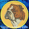Bulldog Embroidered Patch for Bulldog Lovers - Click to Enlarge